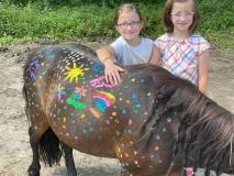 Pony-8